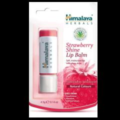 Бальзам для губ Клубничный блеск Himalaya Herbals, 5г