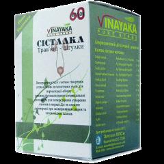 Систалка VInayaka, 60 табл.